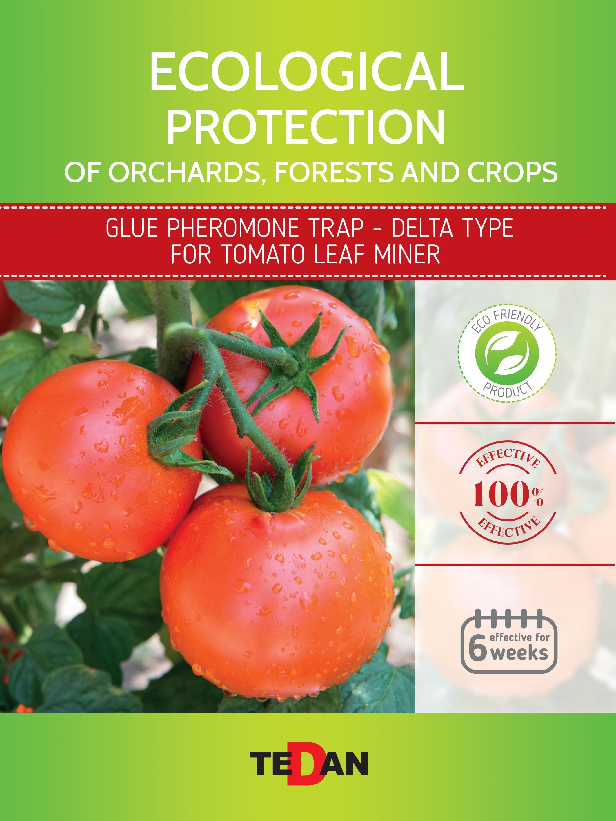 Glue pheromone trap - delta type for tomato leaf miner (tuta absoluta)