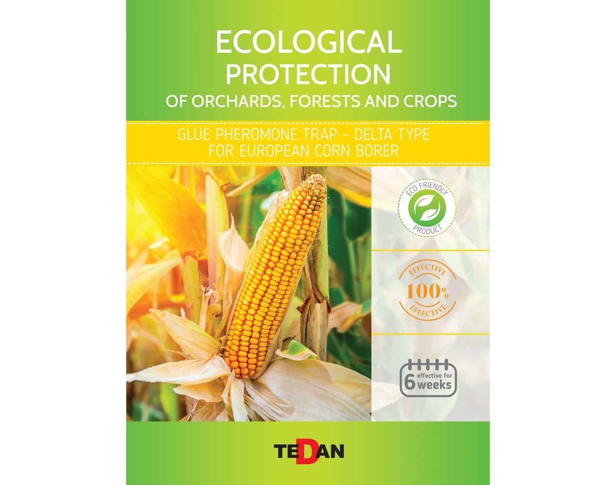 Glue pheromone trap - delta type for European corn borer (Ostrinia nubilalis)