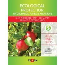 Glue pheromone trap - delta type for  apple coddling moth (Cydia pomonella)