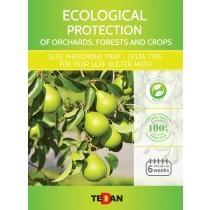 Glue pheromone trap - delta type for pear leaf blister moth (Leucoptera scitella)