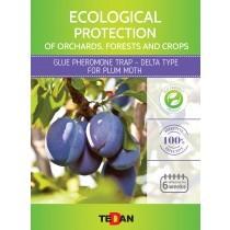 Glue pheromone trap - delta type for  plum fruit moth (Laspeyresia funebrana)