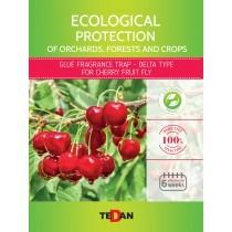 Glue trap - delta type for cherry fruit fly (Rhagoletis cerasi)
